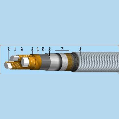 ААПЛГ-10